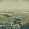 Rock Steady by Leigh Kemp
