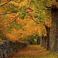 Rock Wall Fall Path by Jeff Folger