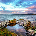 Rocky Pools Of Salty Sea by Debra and Dave Vanderlaan