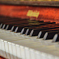 Rohrbach Keyboard by JAMART Photography