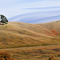 Rolling Hills In Wyoming United States Of America by Gerlinde Keating - Galleria GK Keating Associates Inc