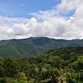 Rolling Hills, Open Sky by Elizabeth Vaughn