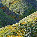 Rolling Hillsides In California - Square by Glenn McCarthy Art and Photography