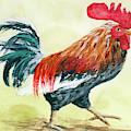 Rooster 1 by Darice Machel McGuire