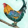Rooster 9 by Darice Machel McGuire