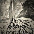Rooted In God's Word Black And White by Lisa Wooten