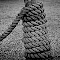 Rope And Post by Mark Miller