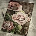 Rose Love Letters by Sharon Popek
