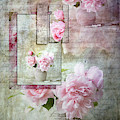 Roses On Roses by Jacqui Boonstra