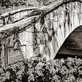 Rosita's Bridge - San Antonio Texas Riverwalk - Classic Sepia by Gregory Ballos
