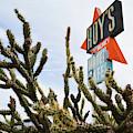 Route 66 Cactus by Kyle Hanson