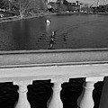 Rowing Towards The Weeks Bridge Charles River Harvard Square Cambridge Ma Black And White by Toby McGuire