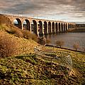 Royal Border Bridge, Berwick-upon-tweed by David Tait