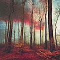 Ruby Red Evening by Dirk Wuestenhagen