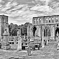 Ruins Of A Cathedral, Elgin Cathedral by Panoramic Images