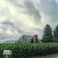 Rural Route by Jack Wilson