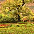 Rural Rustic by Leigh Kemp