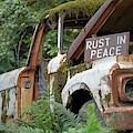 Rust In Peace by Bruce Gourley