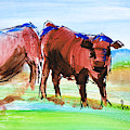 Rust Red Poll Cows - Two Steer Impressionism En Plein Air Sketch Painting by Mike Jory