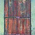 Rustic Barn Wood Door by James BO Insogna