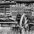 Rustic Horse Drawn Cart by Kurt Meredith