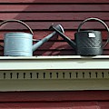 Rustic Watering Cans  by Sari Klein