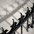 Rusty Railings by Dave Bowman
