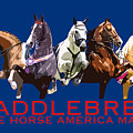 Saddlebred - The Horse America Made by Karly Morgan