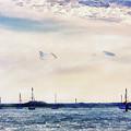 Safe Harbor by Barry Jones