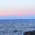 Sail Boat by Lucia Sirna