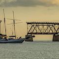 Sailboat  by David Hart