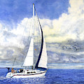 Sailboat With Seagulls by Douglas Castleman