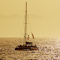 Sailing In The Sunlight by Sun Travels