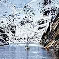 Sailing Into Trollfjord Norway by Martyn Arnold
