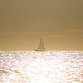 Sailing On Sunshine by Robert Banach