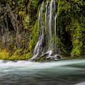 Salt Creek Falls At Salmon Creek by Matthew Irvin