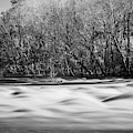 Saluda Rapids Infrared-1 by Charles Hite