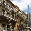 San Francisco Chinatown Italianate Buildings On Commercial Street With View Transamerica Tower R452 by Wingsdomain Art and Photography