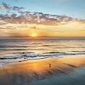 Sandpiper Sunrise  by Debra and Dave Vanderlaan