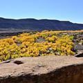 Sandstone Above Golden River Desert Landscape by Brenda Landdeck