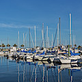 Sanford-marina-6698 by John Zawacki