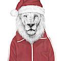 Santa Lion  by Balazs Solti