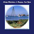 Sarasota Bay Christmas by Susan Molnar