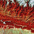 Satellite View Of Himalayas, Khatmandu by Geospace