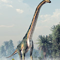 Sauropod by Daniel Eskridge