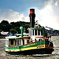 Savannah Belles Ferry by Diann Fisher