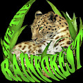 Save The Rainforest by Carol Cavalaris