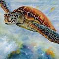 Save The Turtles by Linda Eader
