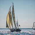 Schooners Racing by Mark Duehmig
