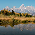 Schwabacher's Landing by Doug Sturgess